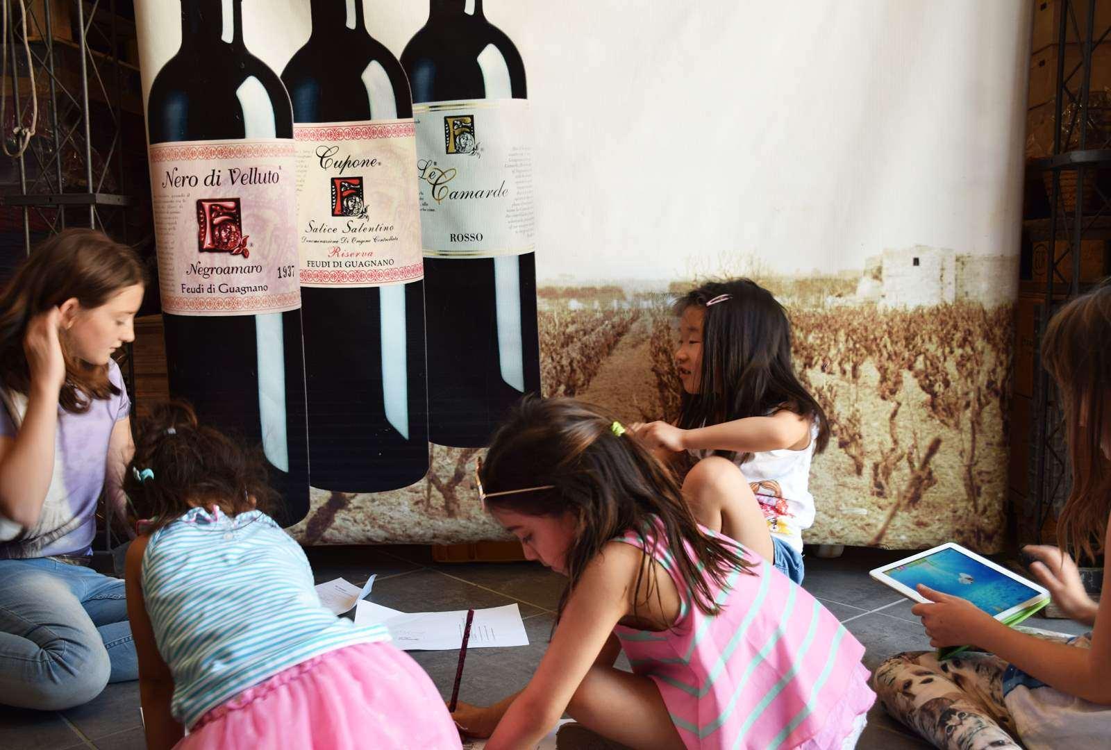 la cantina feudi di guagnano wine library