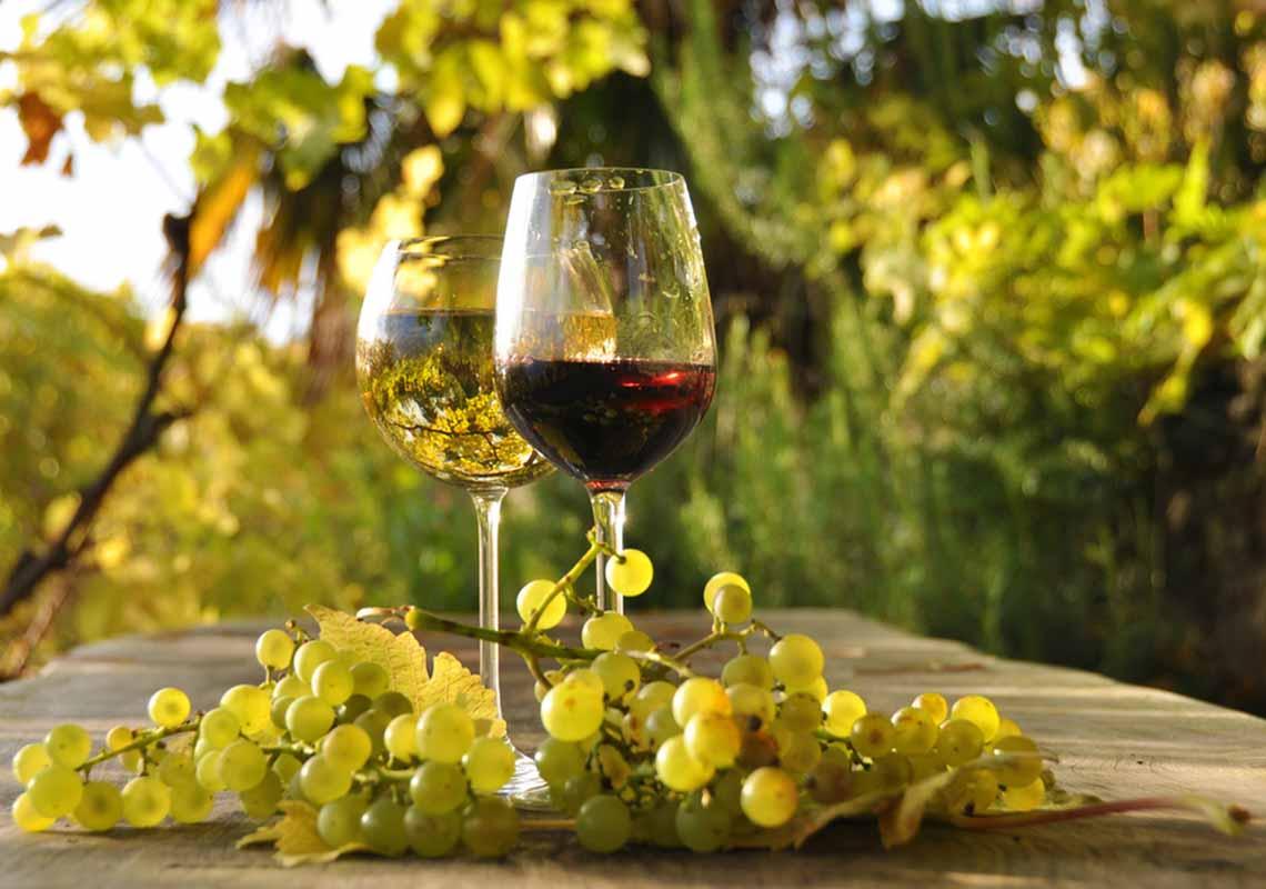 Vino biologico, la purezza nel calice