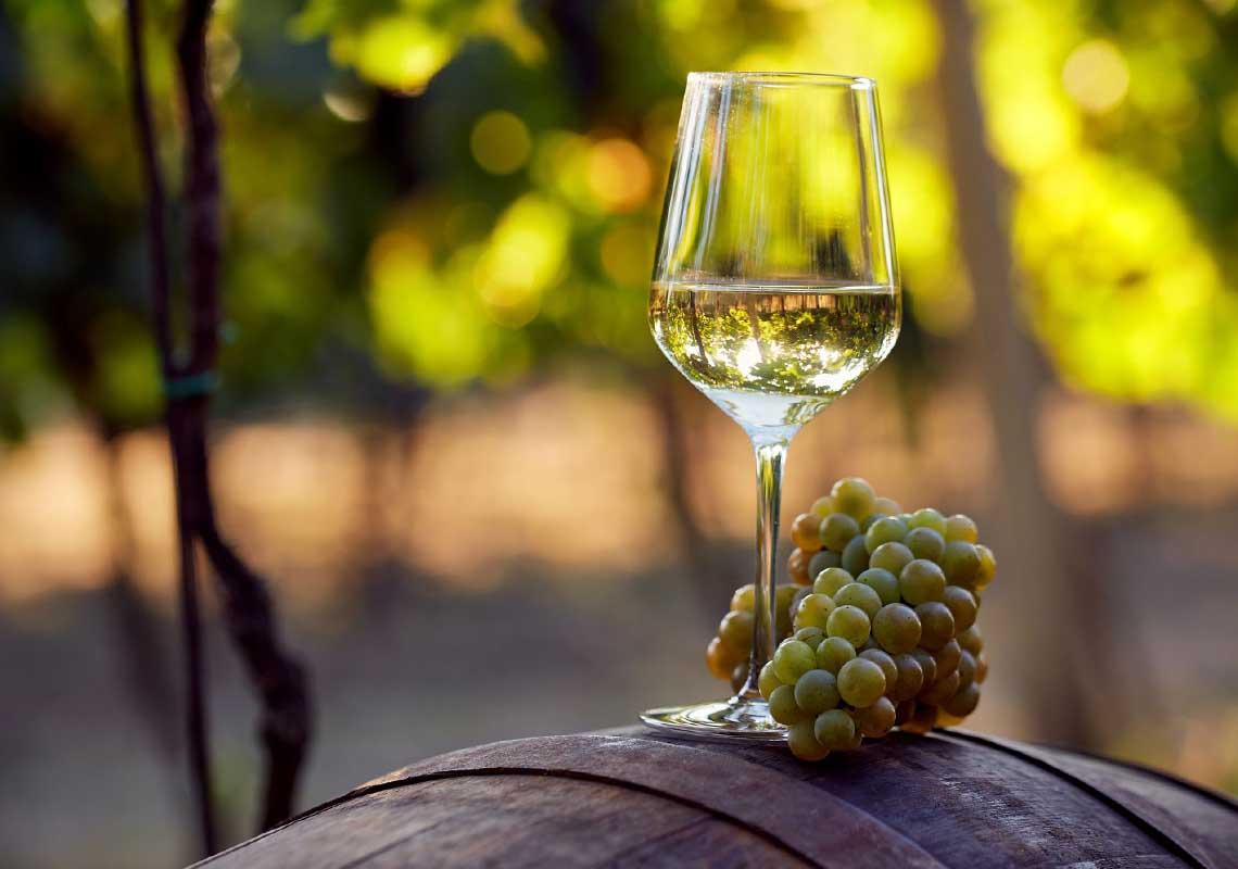 Lo Chardonnay, vitigno dalle incredibili varietà aromatiche